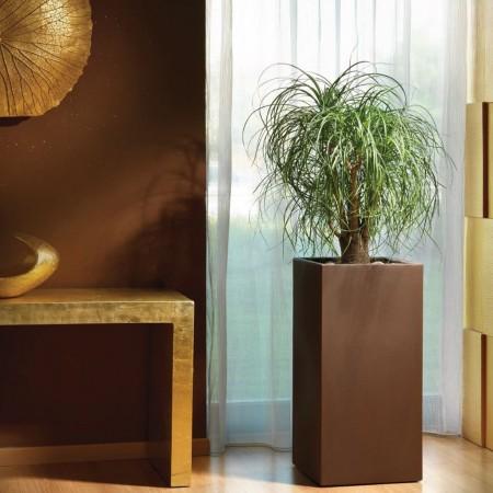 COSMOS cachepot vase, LYXO