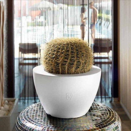 Genesis round bowl, VECA