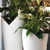 ASSIA cache-pot vase, LYXO